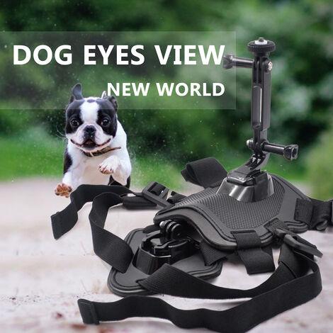 Mascotas perro, arnes de montaje ajustable Shoot correa del pecho de foto y video de una camara Insta360 X / EVO Accion