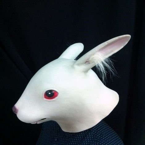 Masque pour les hommes et les femmes de d'émulsion de mascarade de d'Halloween avec les oreilles de Villus