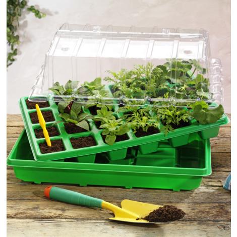 MATIERE RIGIDE - TERRINES, NAPPES ET PLAQUES DE CULTURE - serre rigide : 58 x 19 x 19 cm - Pour réussir vos semis et vos boutures