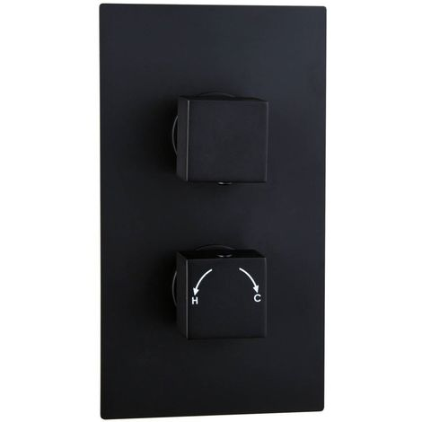 Matte Black Concealed Square Twin Thermostatic Shower Valve