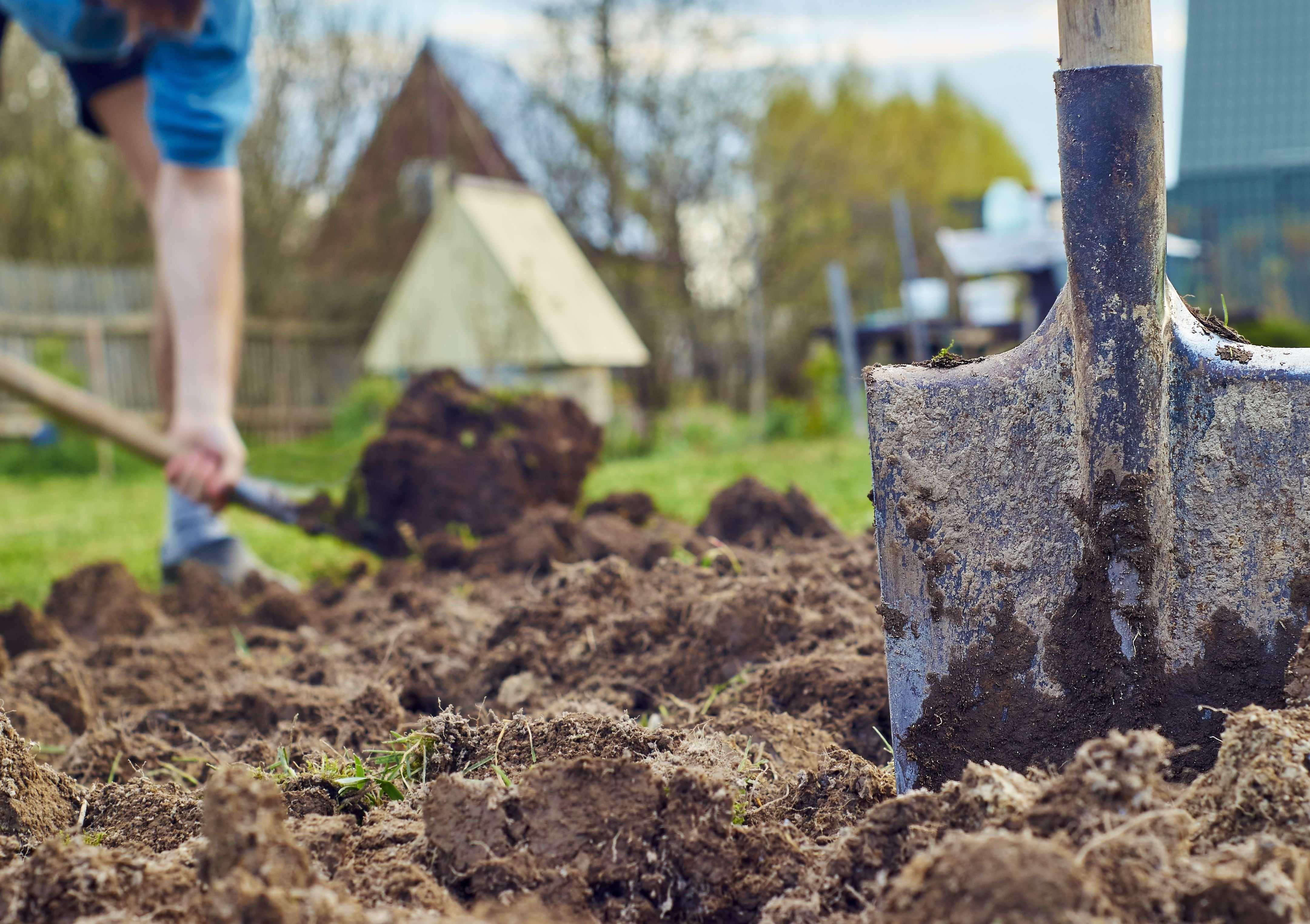 Come scegliere gli attrezzi per lavorare il terreno ?