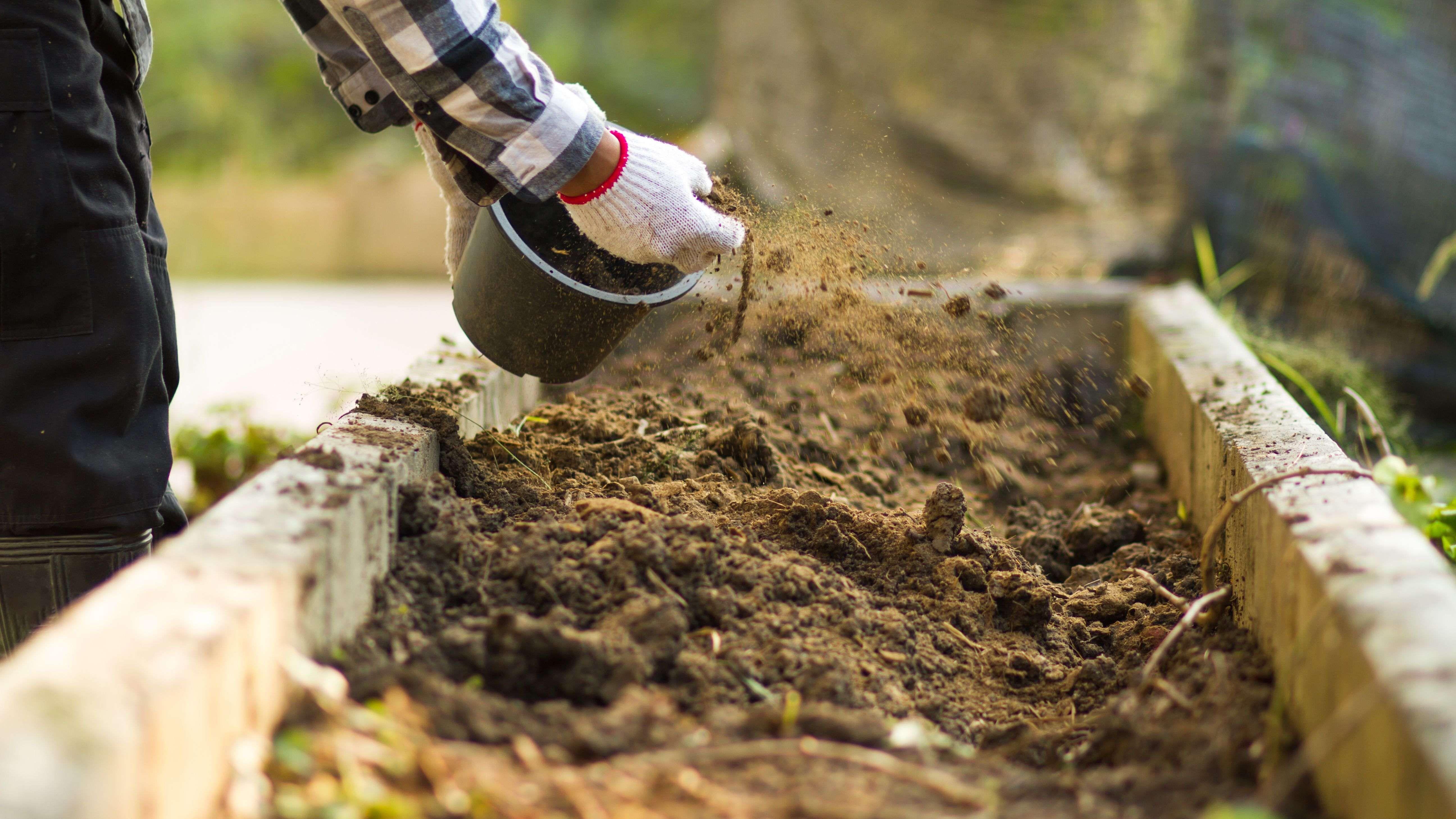 Bodendüngung: Bodenverbesserer und Düngemittel