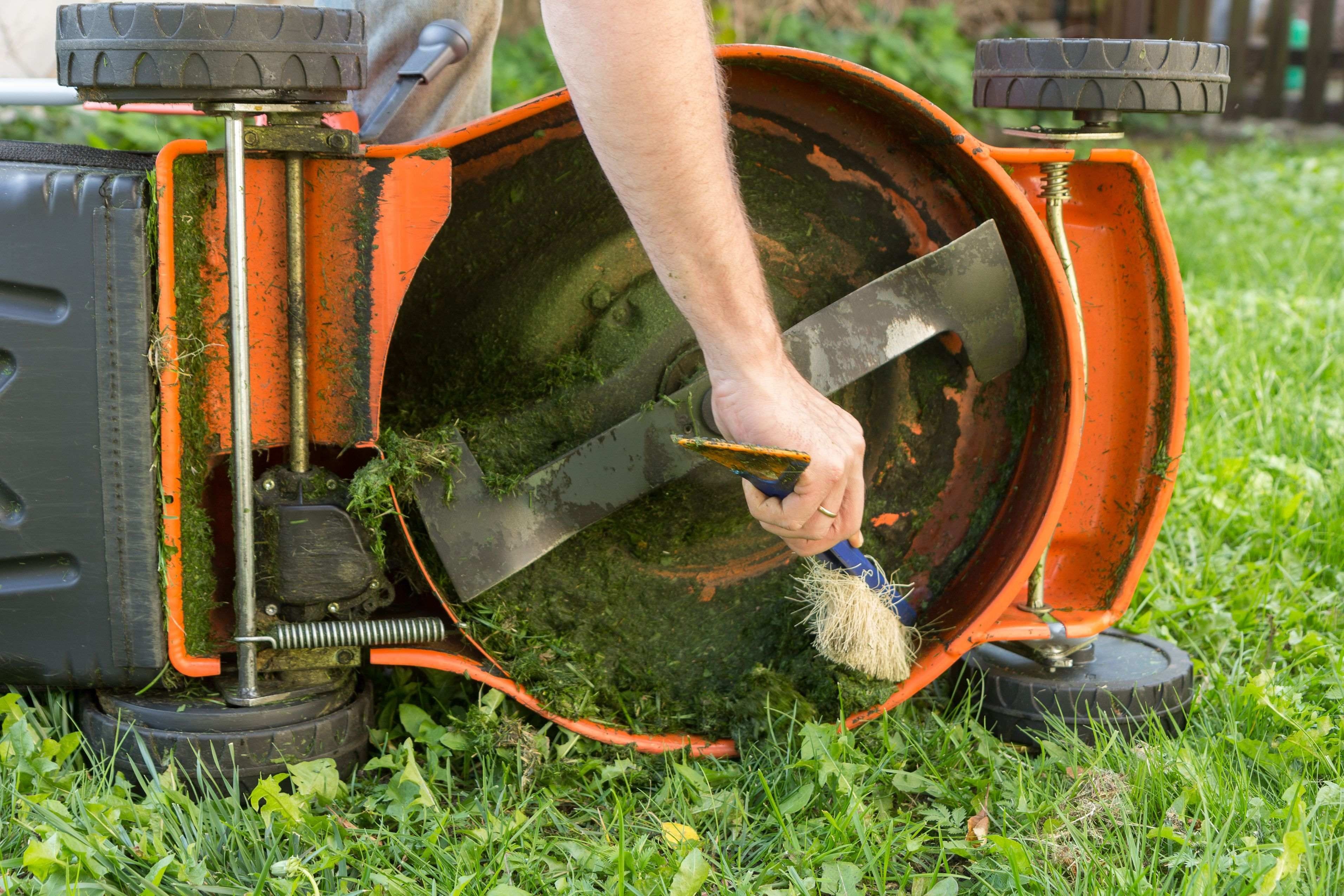 How to maintain  your lawnmower