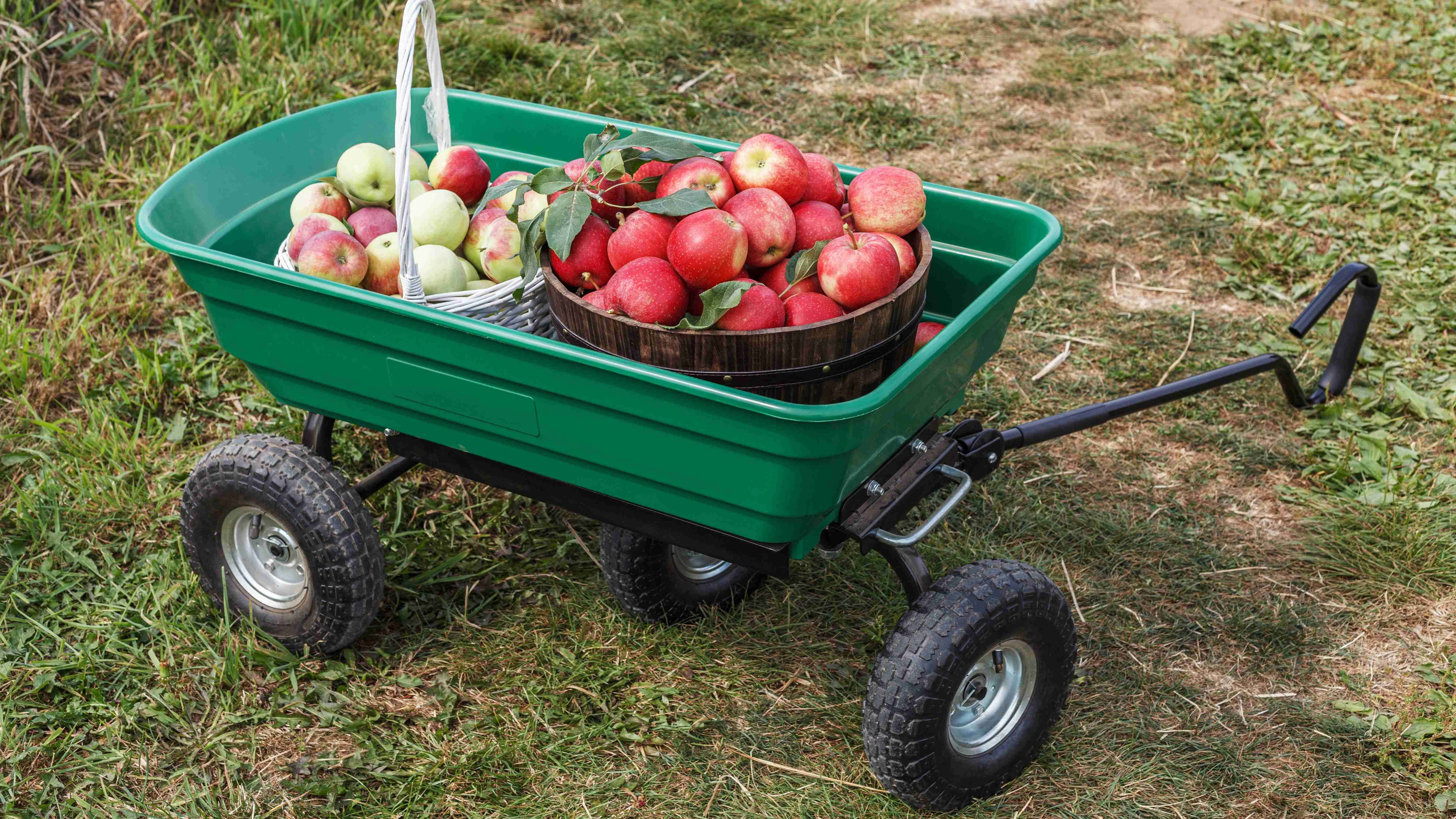 Comment choisir un chariot de jardin