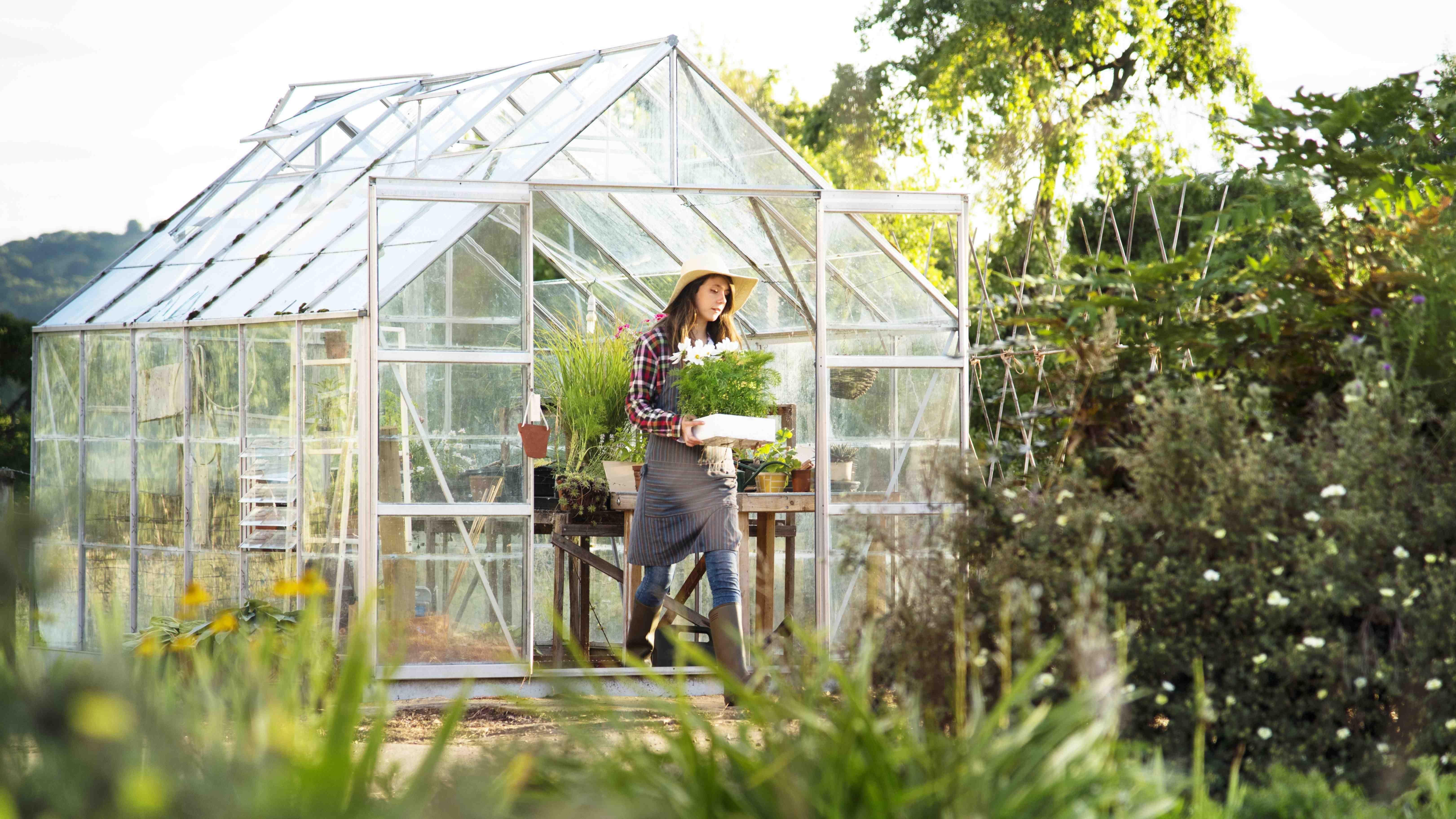 Cómo elegir un invernadero de jardín
