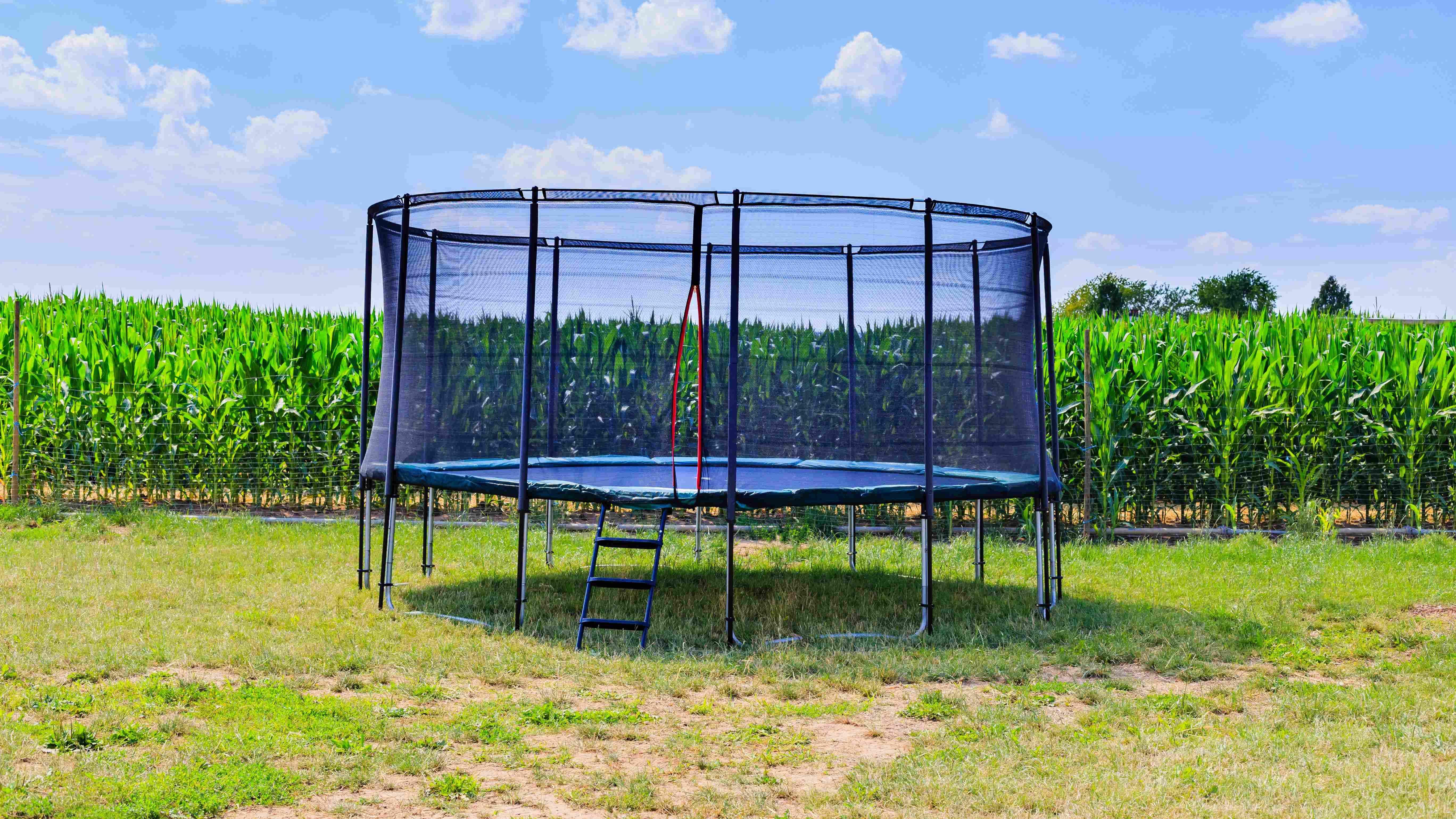 Échelle de trampoline  : comment choisir