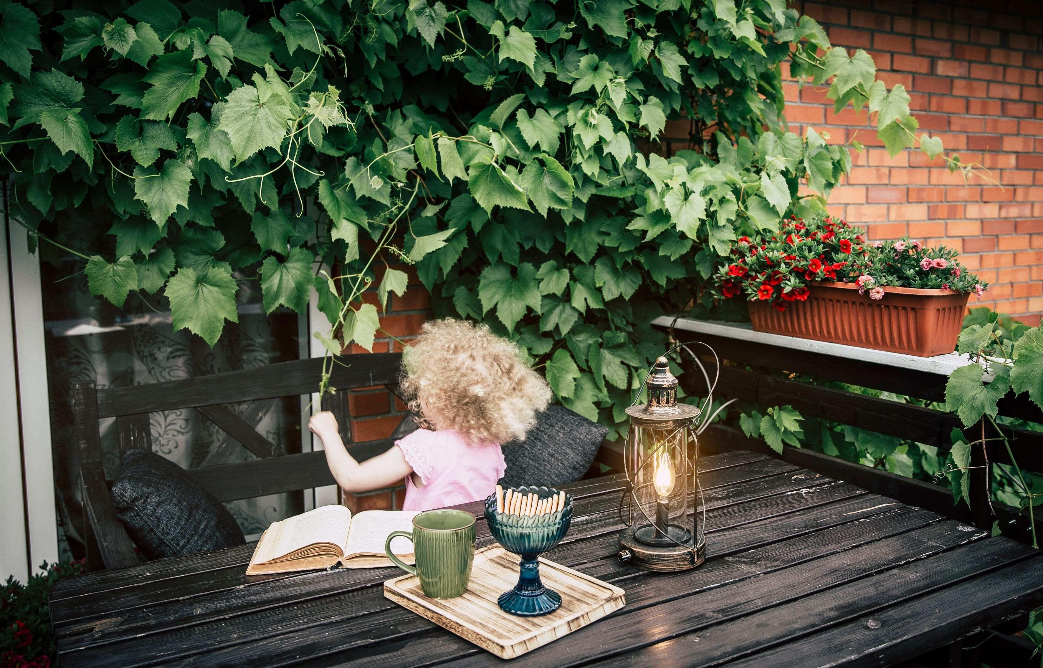 Plantas trepadoras para un balcón o terraza