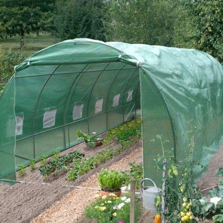 Quali ortaggi coltivare in serra