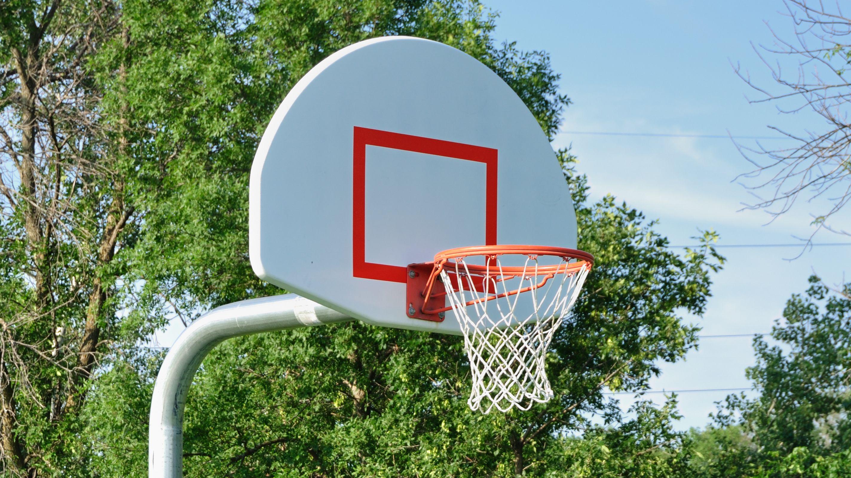 Comment choisir un panneau et panier de basket