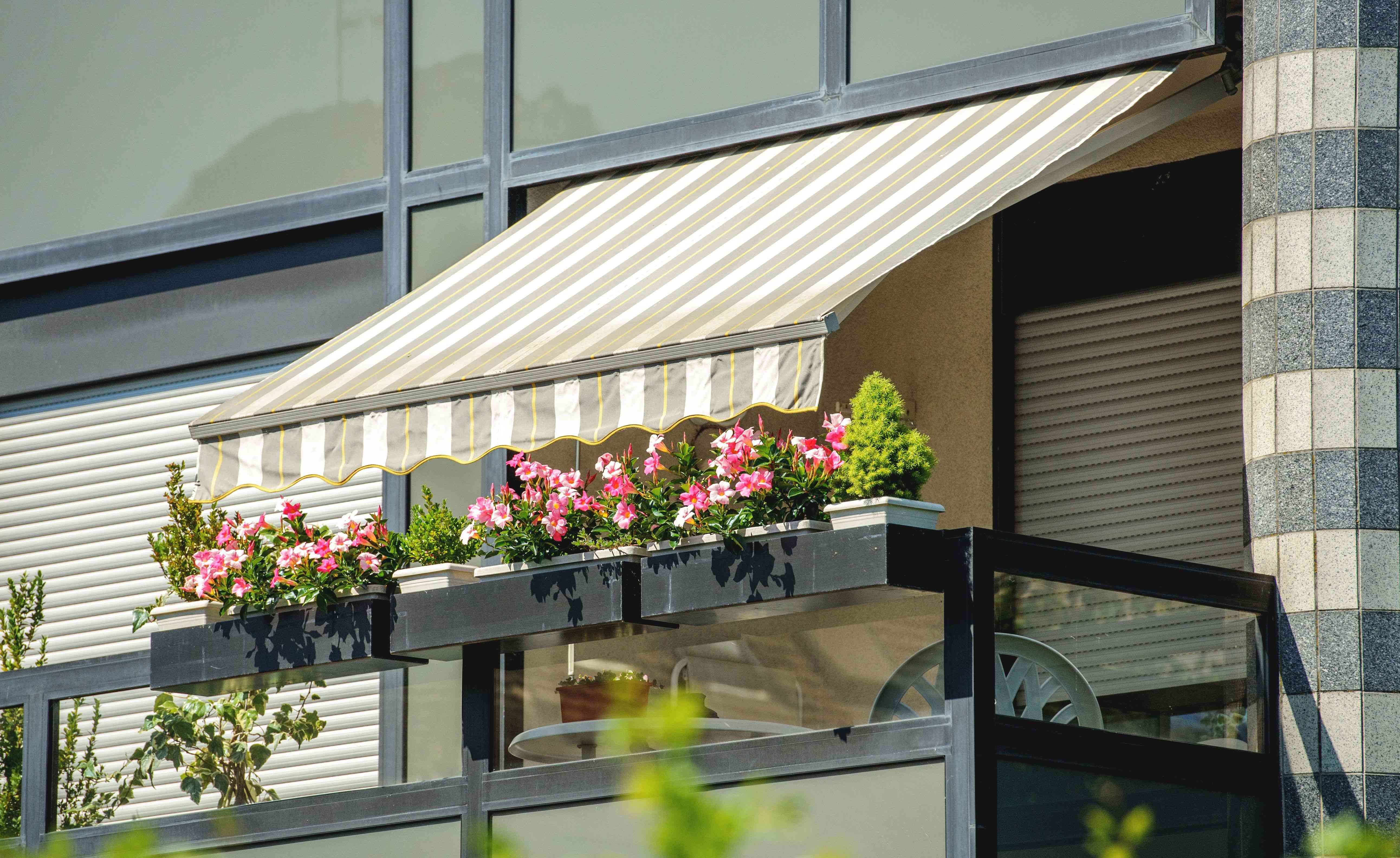Patio awning buying guide