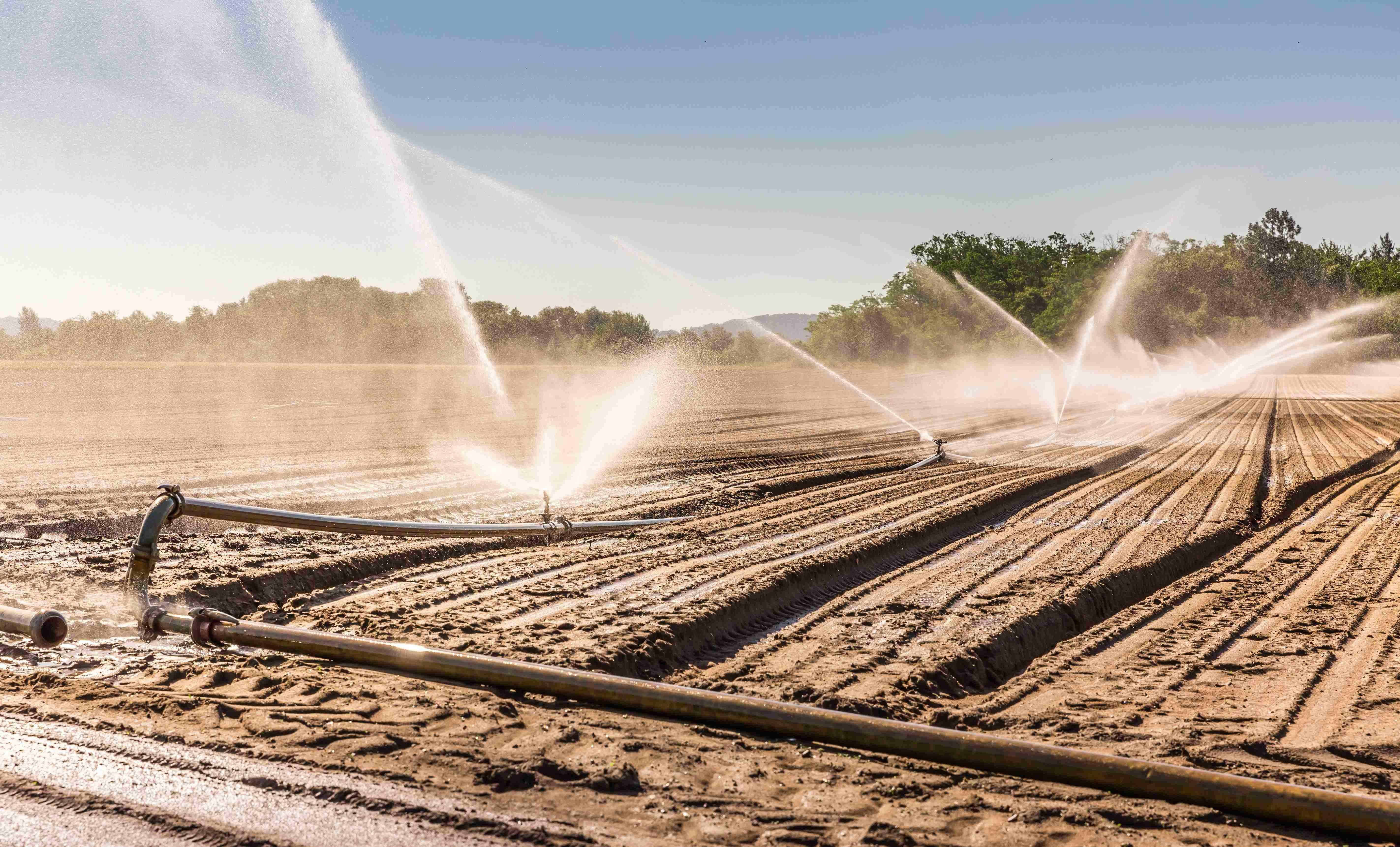 Come installare un irrigatore interrato