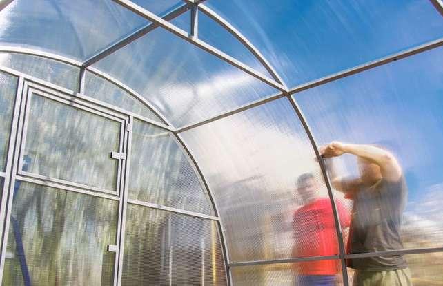 Tunnelgewächshaus aufbauen: So geht's