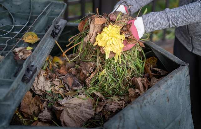 Composter buying guide