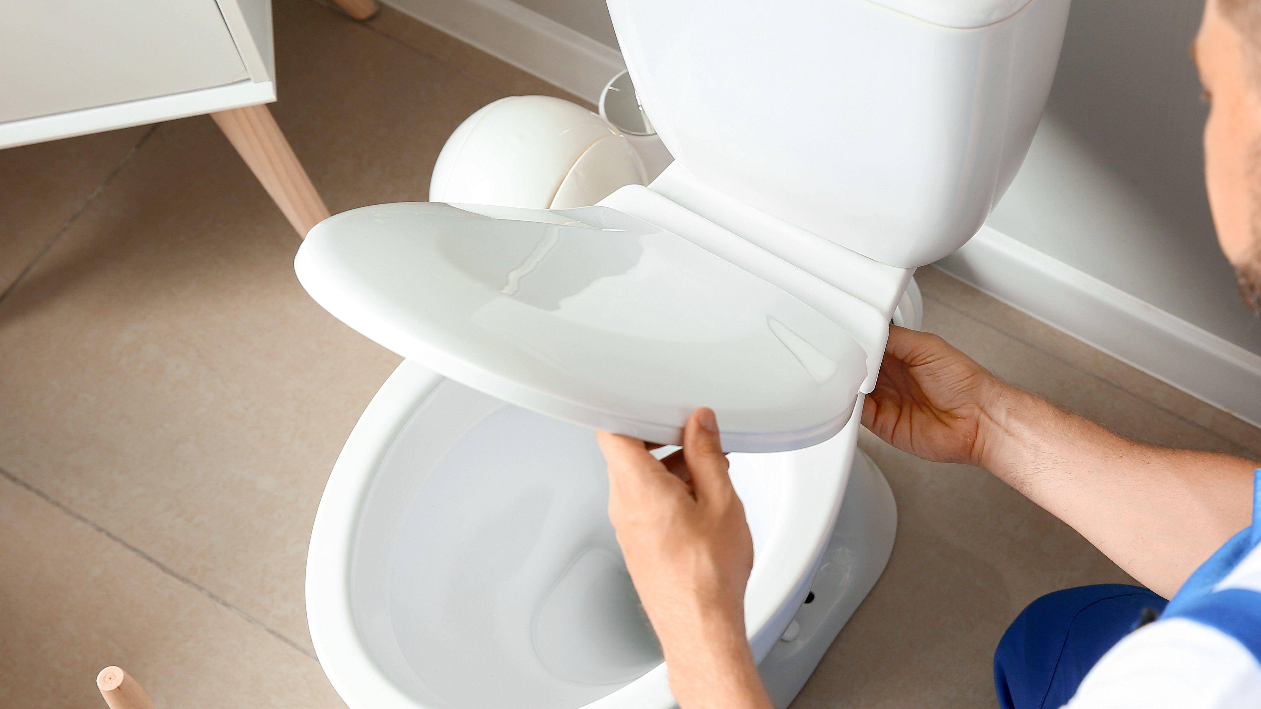 Come scegliere il sedile del WC