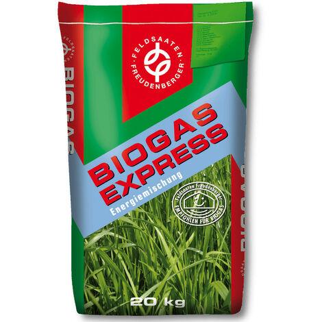 MehrGras BG 110 mélange de haricots verts ha paquet comprenant l'inoculant RF-60 pour le mélange de maïs