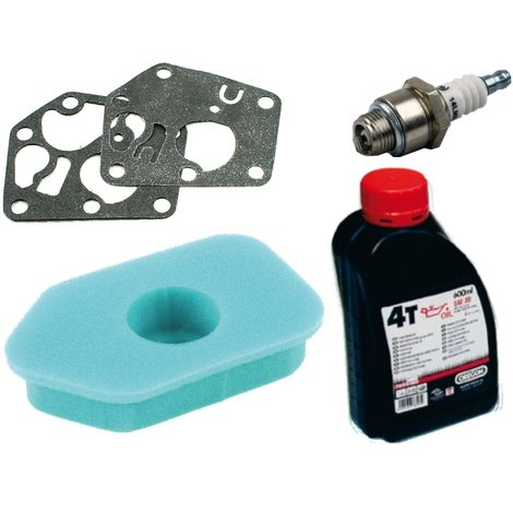 Membrane de carburateur + filtre à air + bougie d'allumage + huile moteur pour BriggsundStratton Sprint