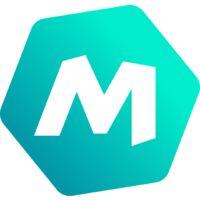 Menthe Marocaine - les 2 plants - Les Plantes Aromatiques