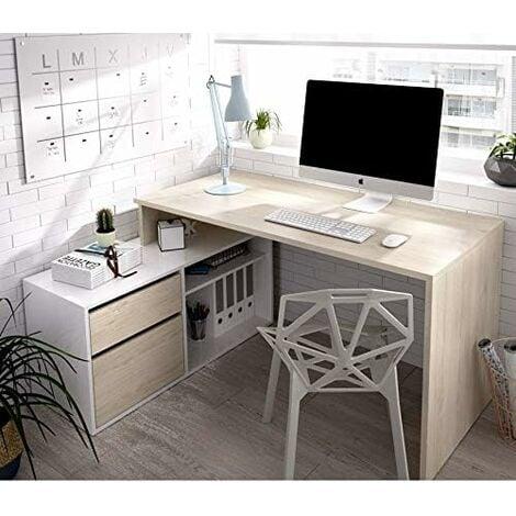 Mesa Escritorio con cajonera 1 cajón, 1 puerta + 1 estante