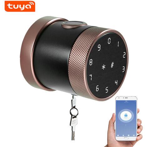 Metodo di sblocco della serratura intelligente Tuya BT: telecomando APP mobile / password / carta / bluetooth / chiave / impronta digitale LVD-06SF-TY-Brown