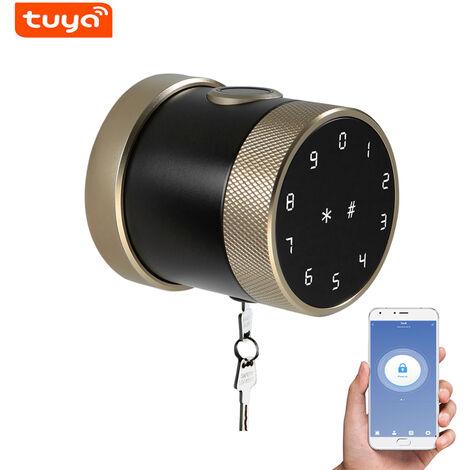 Metodo di sblocco della serratura intelligente Tuya BT: telecomando APP mobile / password / carta / bluetooth / chiave / impronta digitale LVD-06SF-TY-Champagne Gold