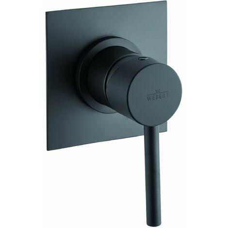 Mezclador de ducha empotrado de estilo minimalista Webert EL880101