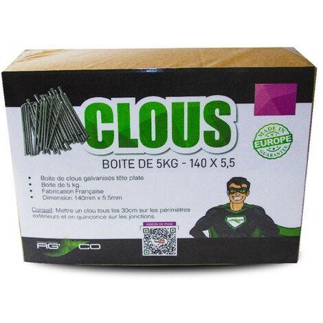 MGS Boite de Clous de 5Kg 140 x 5,5 pour Gazon synthétique