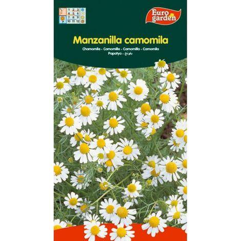 MIBRICOTIENDA semillas fito aromaticas manzanilla (camomila) 00648 (caja 10 unidades)