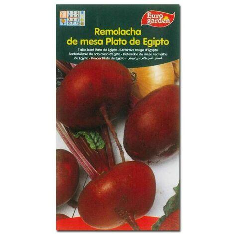MIBRICOTIENDA semillas fito horticolas remolacha de mesa plato de egipto 00276 (caja 10 unidades)