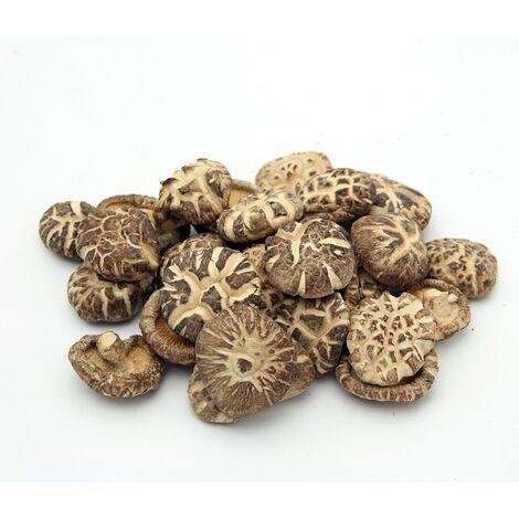 Micelio en Grano de Setas Lentinula Edodes (Shiitake). 100 Gr. Semillas