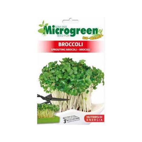 Microgreen di Broccoli (3 Tappetini preseminati)