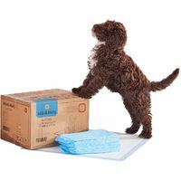 Milo & Misty 100x Dog Super-Absorbent Training Pads with 5 Layer Protection