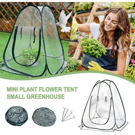 Mini serre de protection d'hiver de tente d'hivernage d'usine de serre chaude