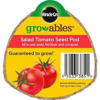 Miracle Gro Groables Tomato
