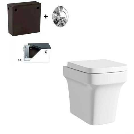 Mode Carter back to wall toilet with soft close seat and concealed cistern