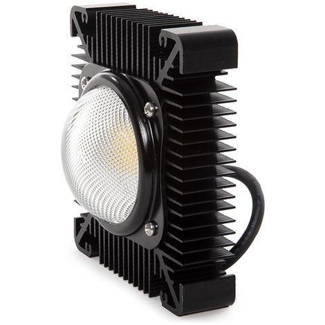 Módulo LED Farolas Villa 40W 140Lm/W IP 67 Lumileds/Meanwell 50.000H | Blanco Frío (LH-FLV40W-CW)