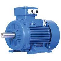 Motore Elettrico Trifase 0,75 Hp 0,55 Kw 1400 Giri Mec80 B3 Con Piedini Albero 14 Mm