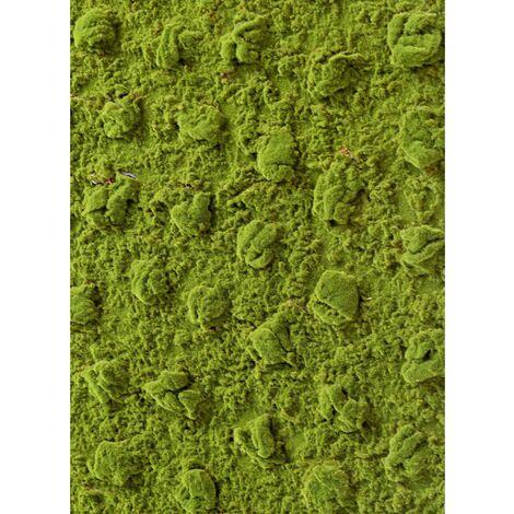 MOUSSE artificielle PLAQUE 200*100 NEW (2 cm) Haut de Gamme MOUSSE Plantes artificielles - VERT
