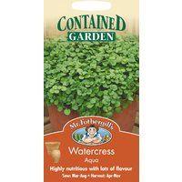 Pictorial Pack Johnsons Jekka/'s Herbs 450 Seeds Basil Mrs Burns/' Lemon