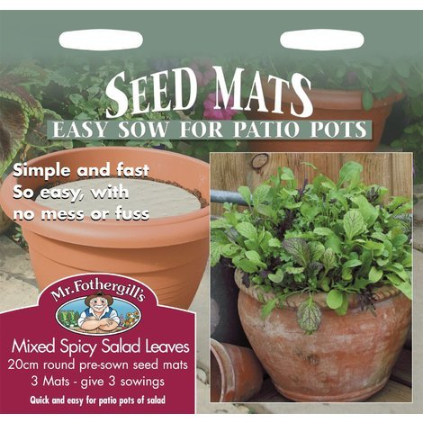 1000 Seeds Herb Pictorial Packet Watercress Aqua Mr Fothergills