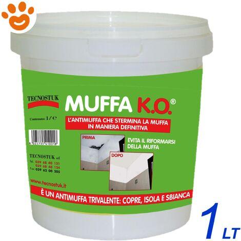 Muffa KO Tecnostuk Antimuffa - 1/3/10 LT - Sbianca Copre e Igienizza