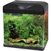 Fish & Aquariums Tappetino Per Acquari Safe Plan 30 X 20cm Amtra Amtra Latest Technology Other Fish & Aquarium Supplies