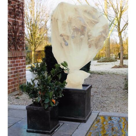 Nature Plant Frost Cover Fleece Beige 2x5 m 6030094