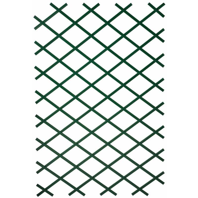 True Deal - Nature Treillis de jardin 2 pcs 100 x 200 cm PVC Vert