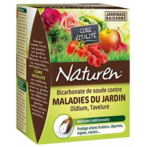 NATUREN Bicarbonate de soude Contre Les Maladies du Jardin 350G