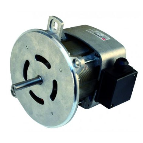 Nema ventilated single-phased 2 flange standard motor