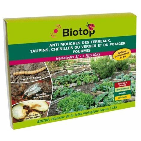 Nematode Sf anti mouche terreaux, chenilles, fourmis - lutte bio