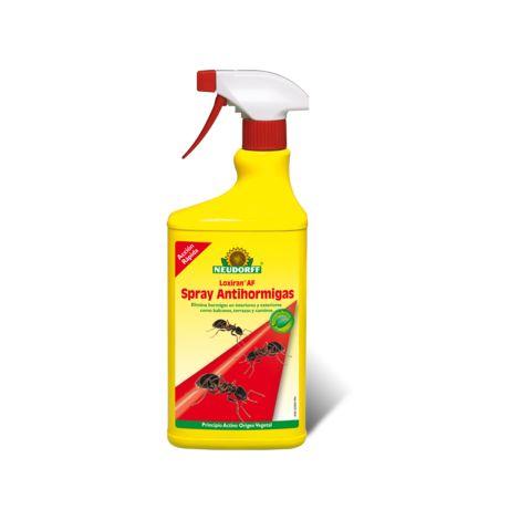 Neudorff Insecticida Hogar Loxiran Pistola AntiHormigas - 750 ml