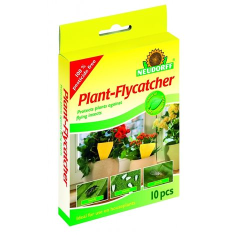 Neudorff Plant Flying Insect Flycatcher - Pack of 10