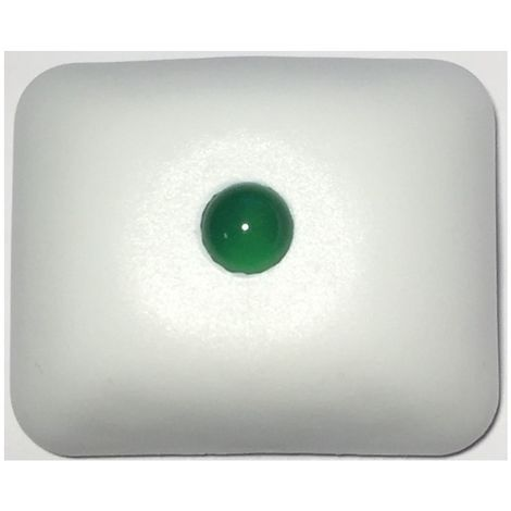 Neutronic NIACS Action indicator Green - flashing and audible