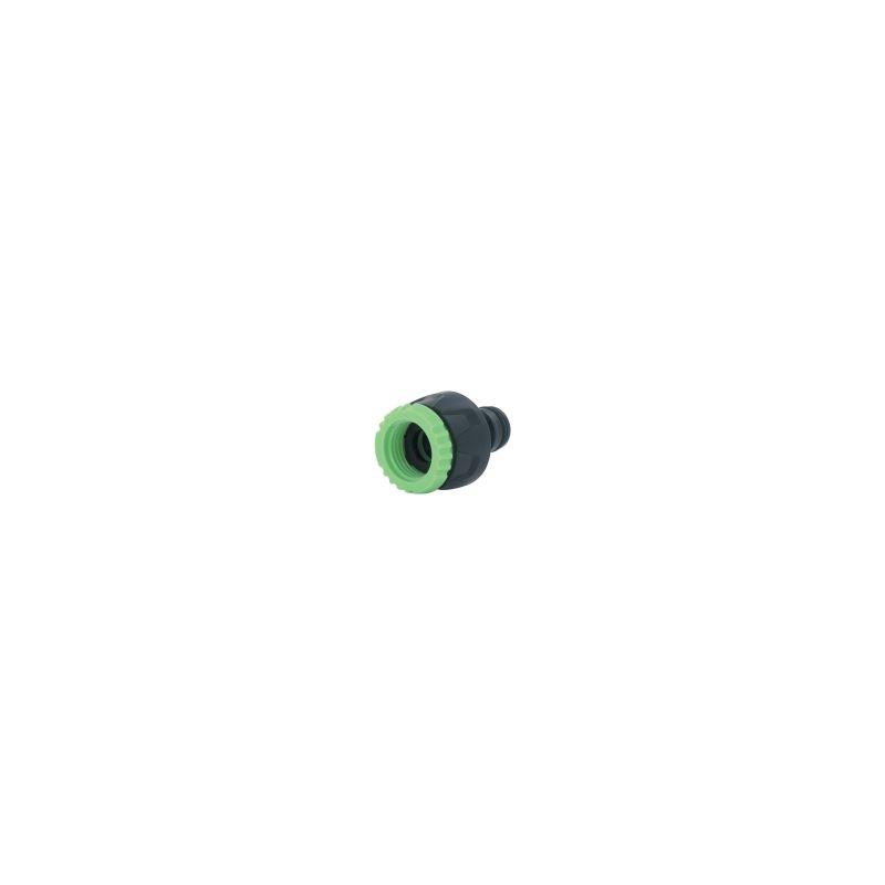 Cap Vert Bouchon femelle 20 x 27